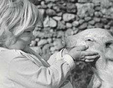 Kinderbücher: Paulinchen von Hans Limmer