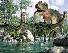 Kinderbücher: Dinojäger - Auf den Spuren der Urzeitriesen