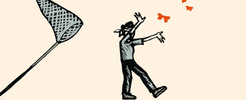 Kinderbücher: Erst wirst du verrückt und dann ein Schmetterling